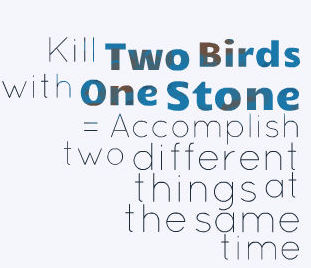 Idiom 68 Kill two birds with one stone 2